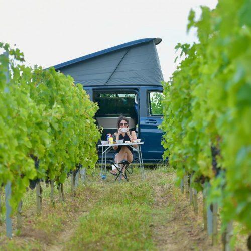 Mit Landvergnügen kannst du als Mitglied kostenlos auf einem von über 1.000 Bauernhöfen, Weingüter oder Imkereien in Deutschland übernachten.
