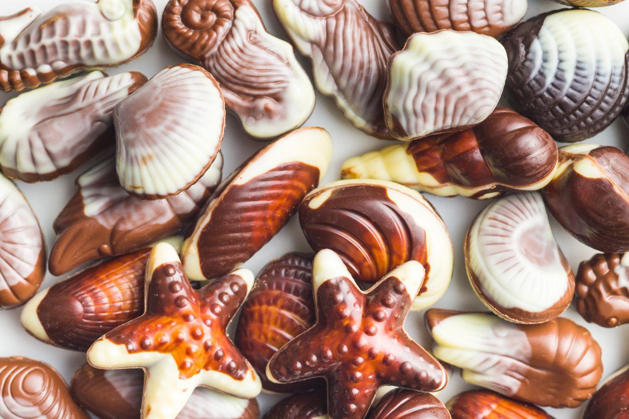 Schoko-Meeresfrüchte