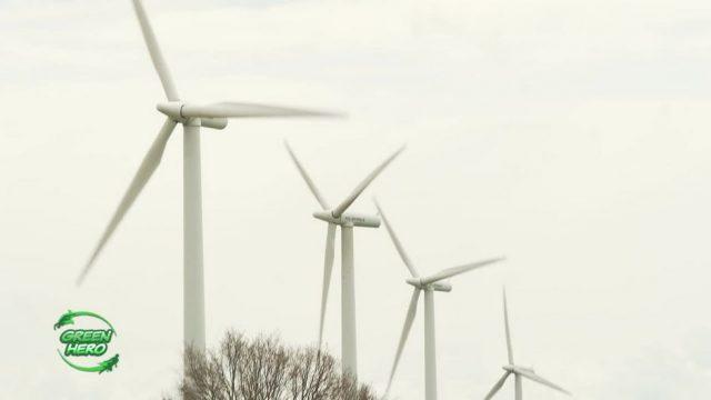 Rettung für Vögel - Der Kollisionsschutz für Windräder