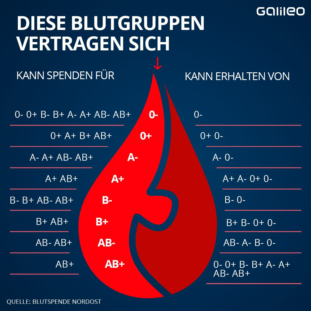 Blutgruppen