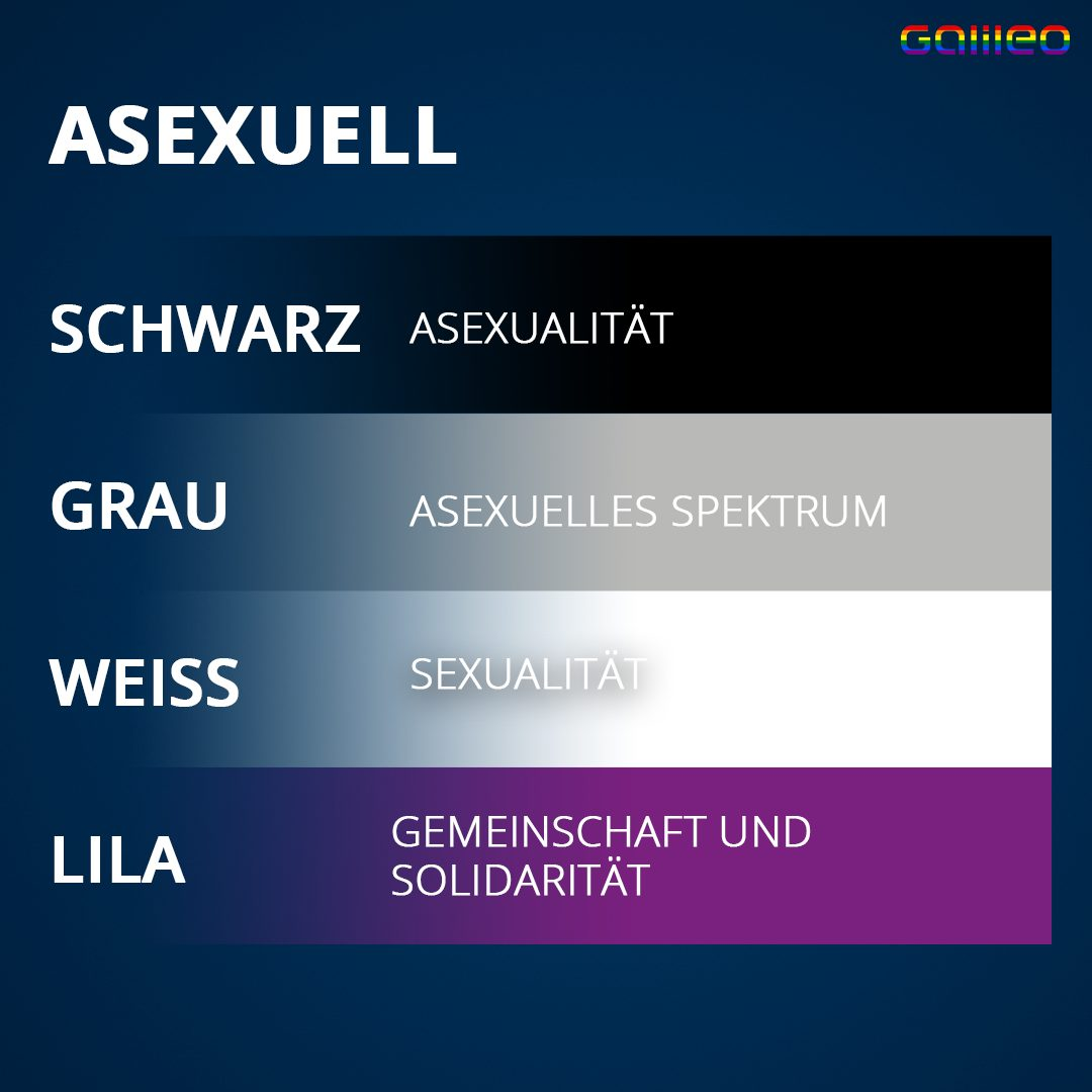 Asexuell Flagge