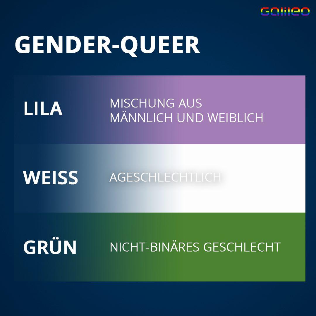 Gender-queer Flagge