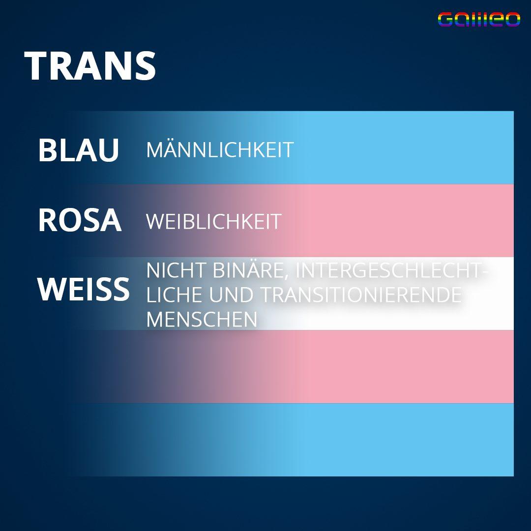 Trans Flagge