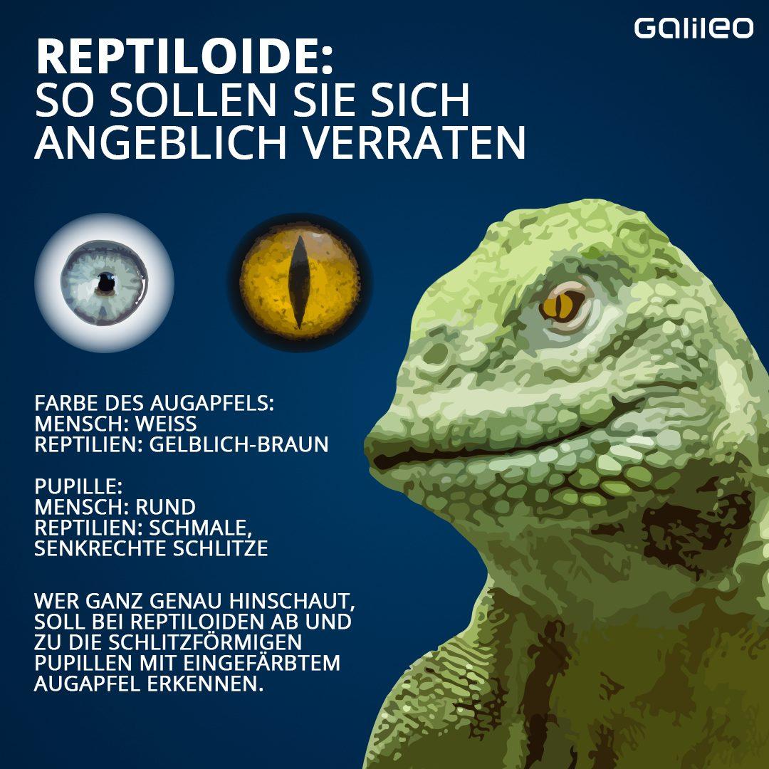 Echsenmenschen oder Reptiloide