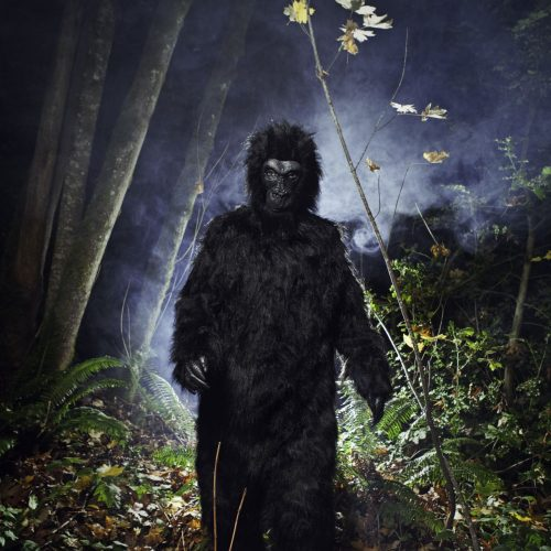 Bigfoot haust angeblich in den Wäldern.