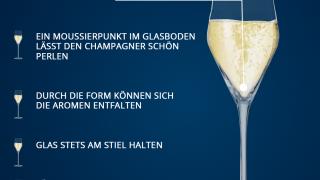 Übersicht Grafik Gläser Champagnertulpe