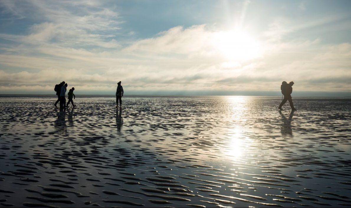 Nordseeinseln Halligen: Urlaub zwischen Wind, Wellen und Wattenmeer