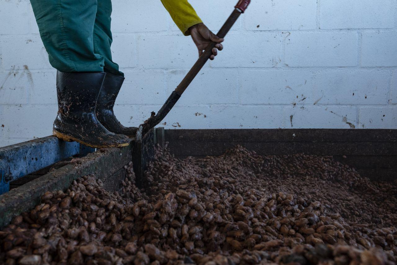 Verarbeitung von Kakaobohnen