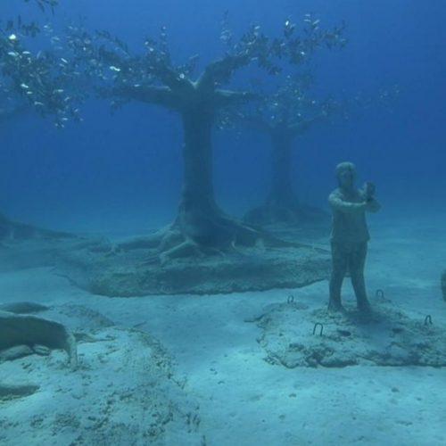 Der britische Künstler Jason deCaires Taylor stellt in einem Unterwasser-Museum vor Zypern beeindruckende Skulpturen aus. Los geht's in den Clips der Woche mit dem Thema Maskenpflicht - für Affen?