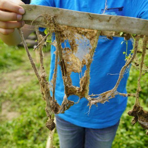 Ein Junge zeigt, wie verrottet die Unterhose nach mehreren Monaten ist.