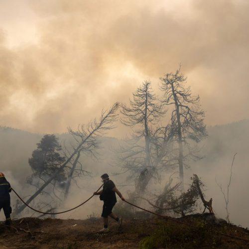 In ganz Griechenland wüten schlimme Waldbrände. Hier versucht ein Feuerwehrmann, die Flammen zu löschen, während ein Anwohner bei einem Waldbrand im Dorf Ellinika auf der Insel Euböa einen Wasserschlauch hält.