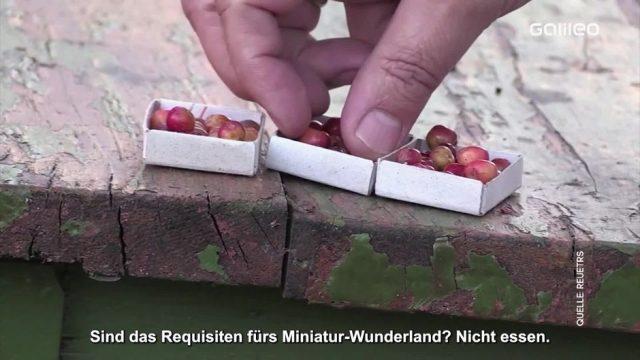Clips der Woche: Die kleinsten Äpfel der Welt und der Roboter Messias