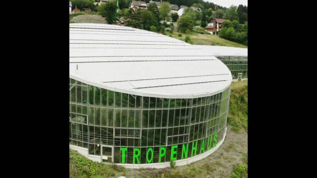 Tropenhaus: Exotische Früchte aus Deutschland - 10s