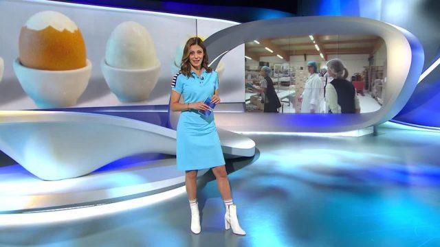 Samstag: Zarte Ware: Arbeiten in der Eierfabrik
